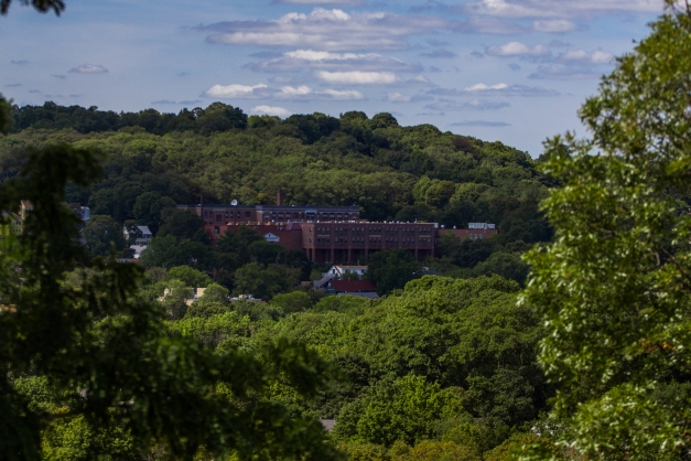 The Ottoson Middle School nestled into the trees, awaiting students' arrivals for the new school year. August 29, 2015.