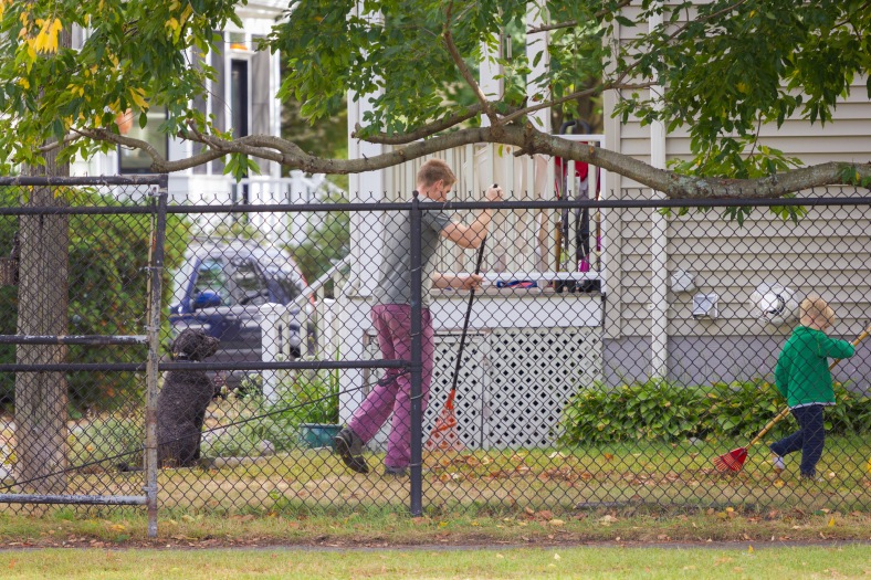 Father and son raking up leaves in their Pond Terrace yard. October 04, 2015.