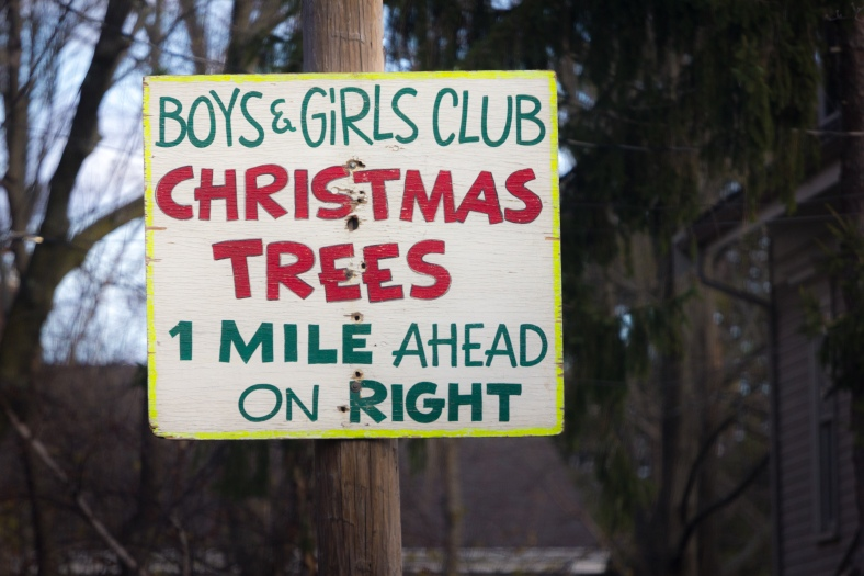 A sign advertising Christmas Trees seen on Thanksgiving Day. November 26, 2015.