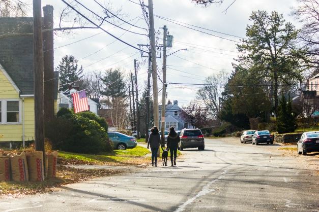 Women walk a dog along GrandView Road on Thanksgiving afternoon. November 26, 2015.