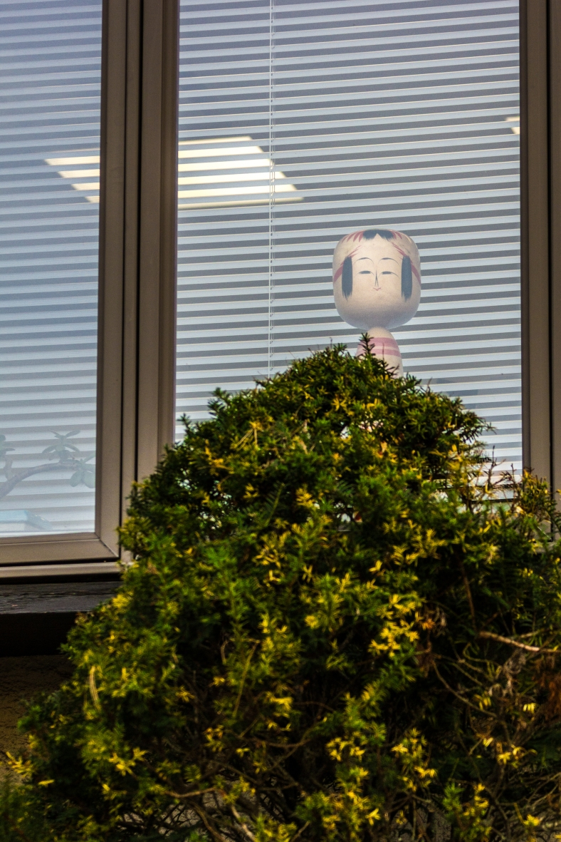 A doll in the window of the Japanese-American Association of Greater Boston on Massachusetts Avenue. November 15, 2013.