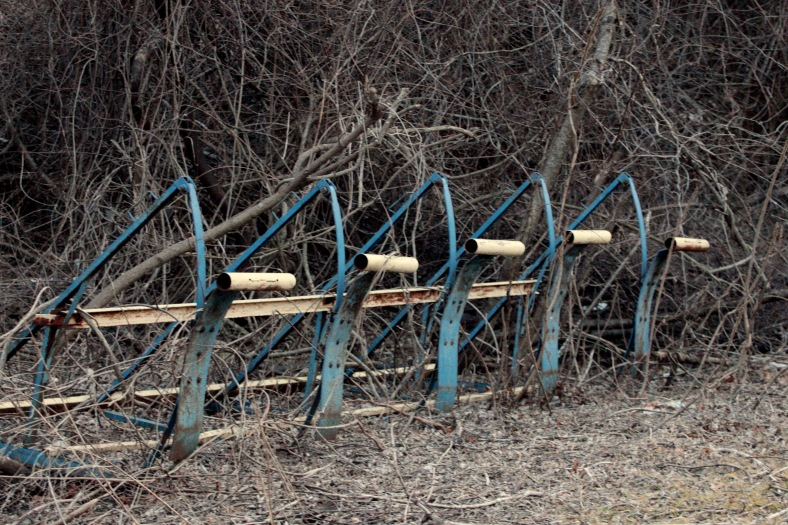 An old tackling sled ensnarled by a thicket along the edge of Arlington Catholic's Summer Street athletic field prior to its synthetic turf makeover. February 28, 2012.
