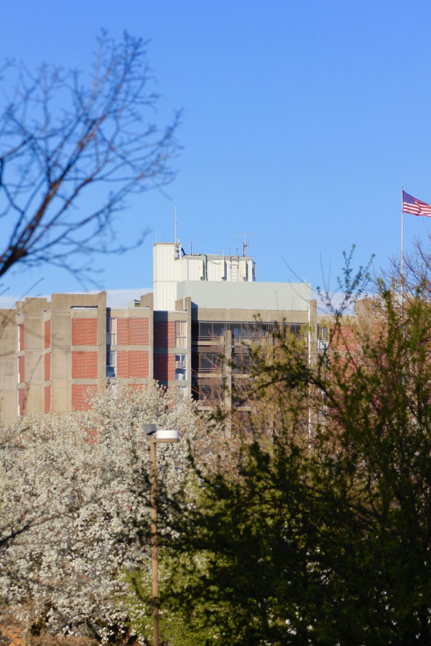 A view of Winslow Tower on an early Spring day. April 4, 2012.