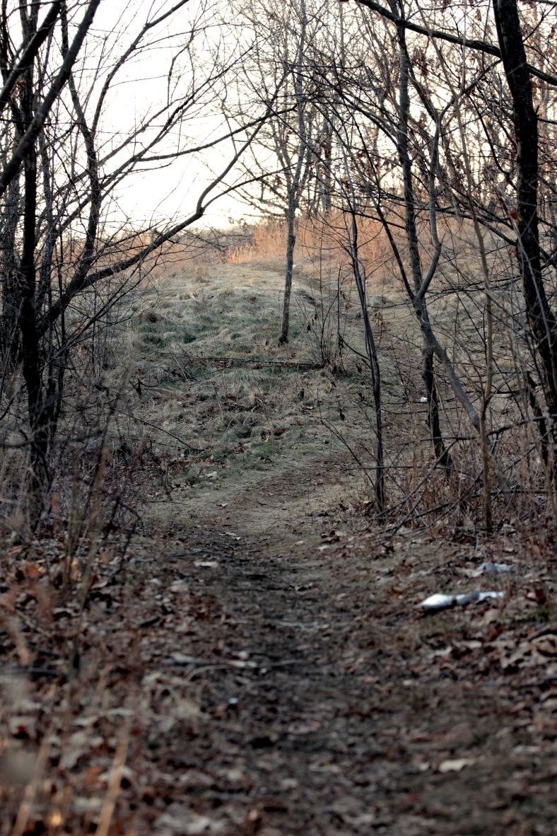 hills hill feb 1 2012